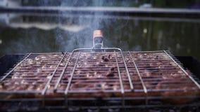 Las salchichas se asan a la parrilla en los carbones en la parrilla para cocinar kebabs almacen de metraje de vídeo
