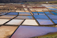 Las Salinas de Janubio, in Lanzarote, Canary Islands, Spain Stock Photos