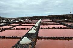 Las salinas del Spårvagnsförare, Fuerteventura kanariefågelölanzarote pannor saltar spain royaltyfri foto