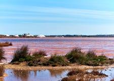 Las Salinas of Torrevieja. Spain Royalty Free Stock Photo