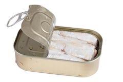 Las sardinas adentro pueden. Imagen de archivo libre de regalías