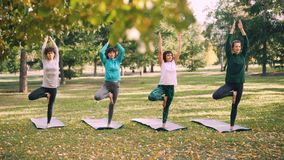Las señoras jovenes concentradas están equilibrando en una pierna con el brazo aumentado en la actitud del árbol entonces que baj metrajes
