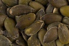 Las semillas de calabaza se cierran para arriba Imagen de archivo libre de regalías
