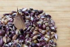 Las semillas del ajo están en un tablero de madera contra la perspectiva de un clavo del ajo imagenes de archivo
