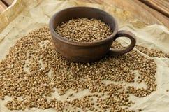 Las semillas del alforfón Fotos de archivo