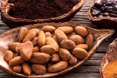 Las semillas del cacao del pote están listas para ser hecho que cacao el polvo pone en fondo de madera Foto de archivo