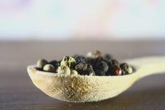 Las semillas enteras de la pimienta mienten en una cuchara de madera Fotos de archivo libres de regalías