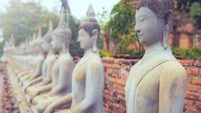 Las series de imagen antigua de Buda, estatuas se alinean en fila imagen de archivo libre de regalías