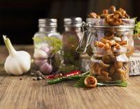 Las setas del casquillo de la leche del azafrán conservaron en vinagre el eneldo y la pimienta del ajo en los bancos de un cuenco Fotos de archivo