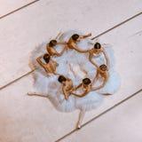 Las siete bailarinas en piso Imagen de archivo libre de regalías