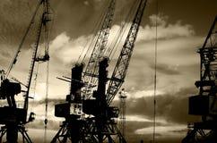 Las siluetas de la noche del cargo cranes en la foto negra y blanca del puerto marítimo Imagenes de archivo