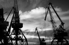 Las siluetas de la noche del cargo cranes en la foto negra y blanca del puerto marítimo Fotografía de archivo