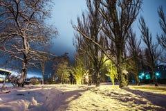 Las siluetas de un par en parque nevoso en la noche se encienden Foto de archivo libre de regalías