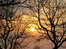 Las sombras de la puesta del sol Fotografía de archivo libre de regalías