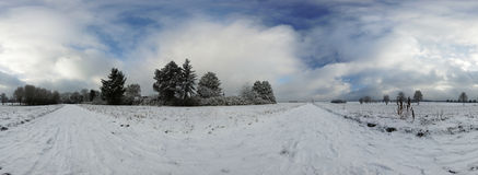Las 360 stopni bańczasta panorama Obrazy Royalty Free