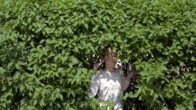 Las subidas de la muchacha fuera de los arbustos verdes almacen de video