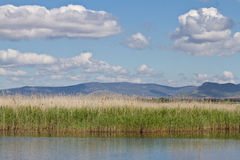 Las Tablas de Daimiel. Spain Lake Stock Photos
