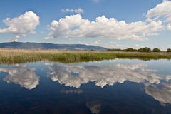 Las Tablas de Daimiel. Spain Lake Royalty Free Stock Photo