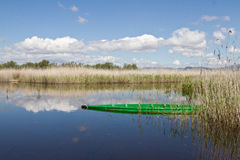 Las Tablas de Daimiel. Spain Lake Royalty Free Stock Images
