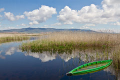 Las Tablas de Daimiel. Spain Lake Stock Photo