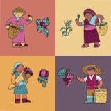 Las tarjetas coloreadas con los granos de café colector, colector del té, subieron jardinero, dueño de la yarda de la vid ilustración del vector