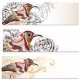 Las tarjetas de visita florales fijaron con los pájaros y las flores para el diseño Imagen de archivo