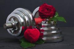 Las tarjetas del día de San Valentín se divierten el fondo con la caja de la pesa de gimnasia, color de rosa y del corazón fotos de archivo libres de regalías