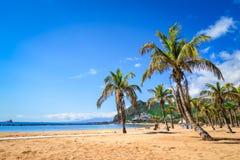 Las Teresitas, Tenerife, kanariefågelöar, Spanien: Las Teresitas strand royaltyfri bild
