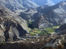 Las terrazas de la montaña con los campos verdes y amarillos, cadenas de colinas broncean el color, cultivo colgante, el Himalaya Imagenes de archivo