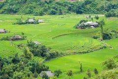 Las terrazas del arroz colocan en la estación de Rainning en Tule Imagen de archivo