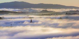 Las tierras de la meseta de Dalat de la cubierta de la niebla, Vietnam, fondo con la magia de la niebla densa y del sol irradian, imagen de archivo