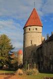 Las torres de Tallinn Imágenes de archivo libres de regalías