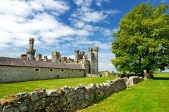 Las torres y las torrecillas de la arboleda de Ducketts, de una gran casa del siglo XIX arruinada y del estado anterior en Irland imágenes de archivo libres de regalías