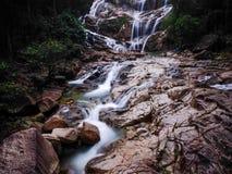 Las Tropikalny siklawa Zdjęcie Royalty Free