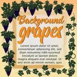 Las uvas decorativas Fotografía de archivo libre de regalías