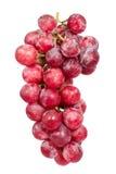 Las uvas rojas aislaron imagen Foto de archivo libre de regalías