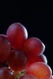 Las uvas se cierran para arriba Imagen de archivo libre de regalías