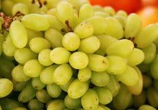 Las uvas se pueden utilizar para hacer el vino, atasco, jugo, jalea, extracto de la semilla de la uva, pasas, vinagre imágenes de archivo libres de regalías