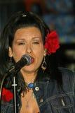 Las vírgenes, Rebekah Del Rio fotografía de archivo libre de regalías
