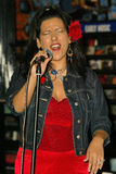 Las vírgenes, Rebekah Del Rio fotografía de archivo