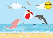Las vacaciones de verano con los delfínes juegan la playa de la bola Imagen de archivo libre de regalías