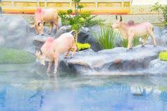 Las vacas en el cuento de hadas de Asia 171105 0481 fotografía de archivo libre de regalías