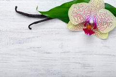 Las vainas y la orquídea de la vainilla florecen en fondo de madera Copie el espacio Fotos de archivo