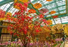 Las Vegas Amerikas förenta stater - Maj 05, 2016: Den japanska blomningträdgården på det lyxiga hotellet Bellagio Royaltyfri Foto