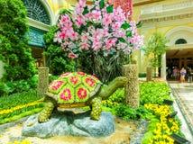 Las Vegas Amerikas förenta stater - Maj 05, 2016: Den japanska blomningträdgården på det lyxiga hotellet Bellagio Arkivfoton