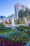 Las Vegas , Caesars Royalty Free Stock Images