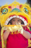 Las Vegas , Chinese New year Royalty Free Stock Image