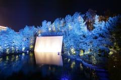 LAS VEGAS - 3 FÉVRIER : Le lac des rêves chez WYNN Resort Hotel sur le Fe Images stock