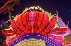 Las Vegas, fenicottero Immagine Stock