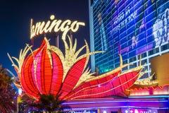 Las Vegas, flamant Photographie stock